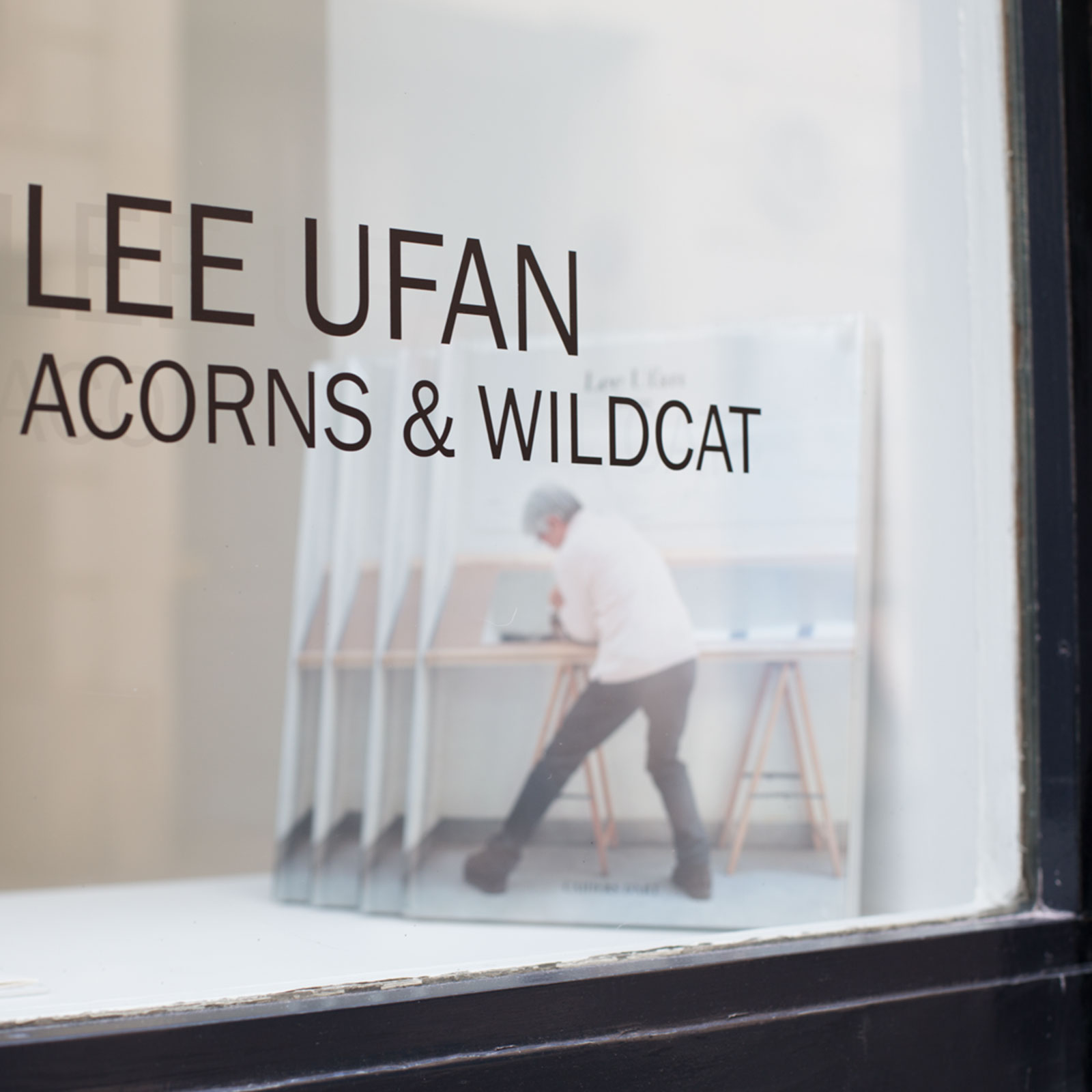 Lee Ufan – Acorns and Wildcat & Traces